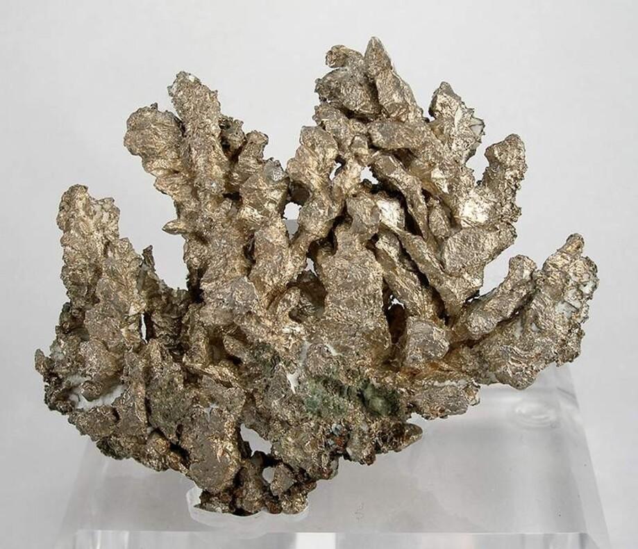 Mineralienatlas Lexikon - Mineralienportrait / Silber / Nordamerika