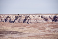 USA/Arizona/Apache Co./Petrified Forest National Monument/Petrified Forest