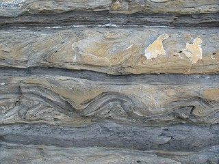 convolute bedding/slump-folds