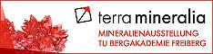 http://www.terra-mineralia.de